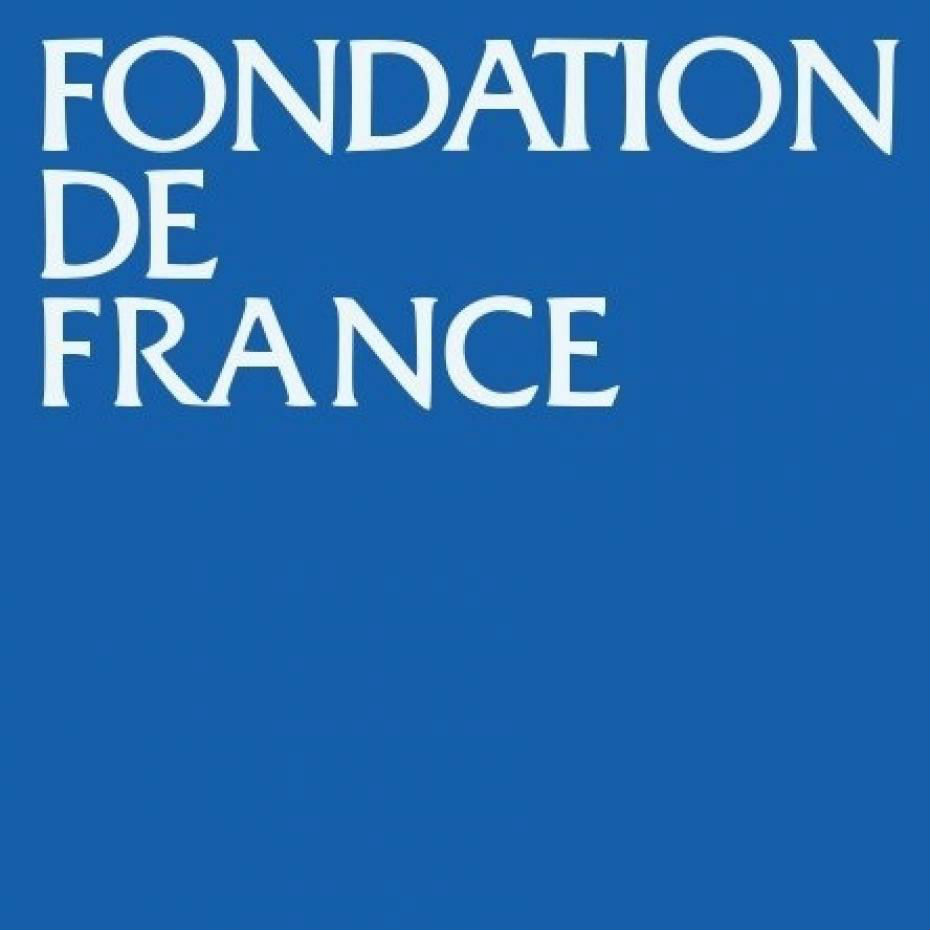 fondation-de-france-logo